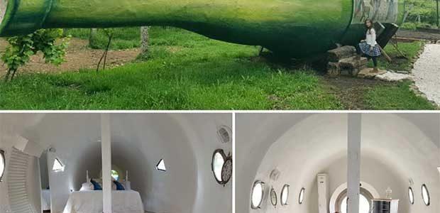 Dormir en el interior de una botella de albariño ya es posible en Galicia!